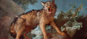 Un loup percé D'une lance, 1771, © David Rase.