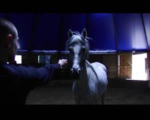 Emilie Pitoiset, Othello, Video, 1'36, 2006. 1/5 AVN Collection, Vienne.